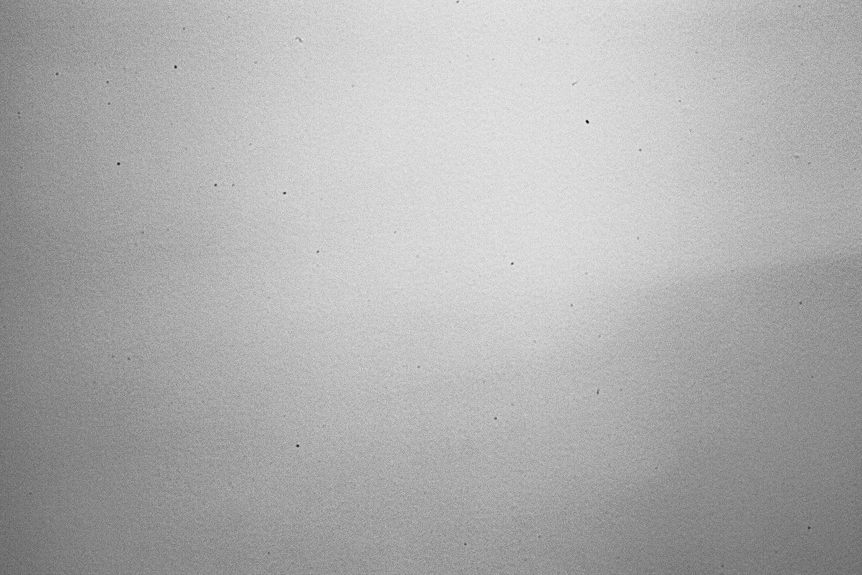 Canon 50mm prime showing sensor dust